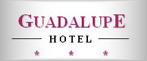 Restaurant at Hotel Guadalupe Granada Spain